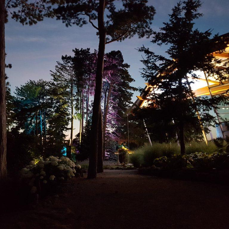 rock garden visitor centre at night