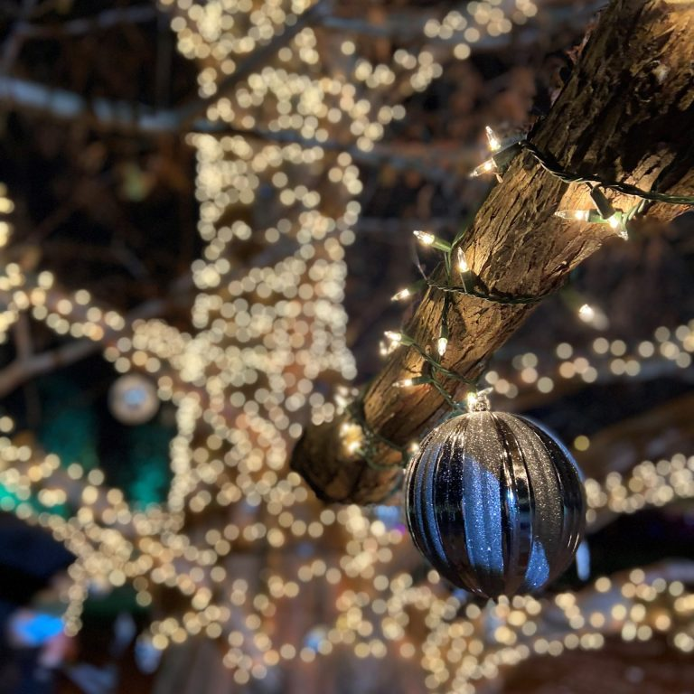 Close up of silver christmas ball ornament hanging on tall tree