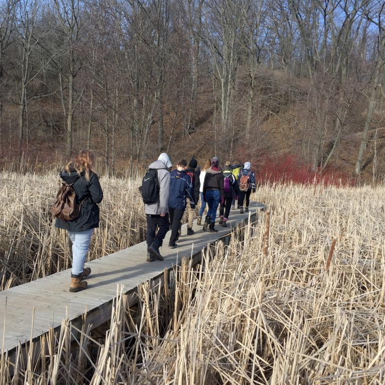Yes Alliance hiking A Boardwalk Trail