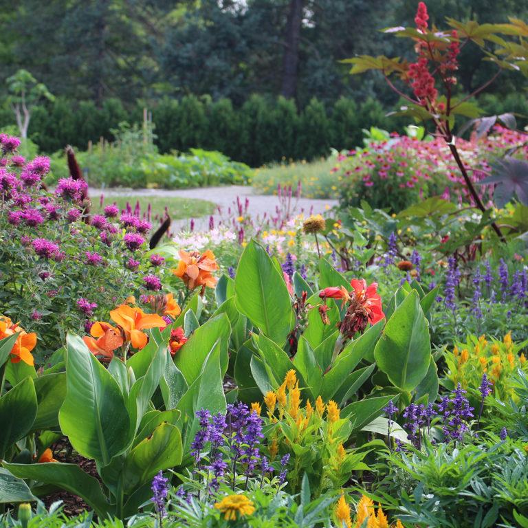 Hendrie Park Global Garden In Bloom
