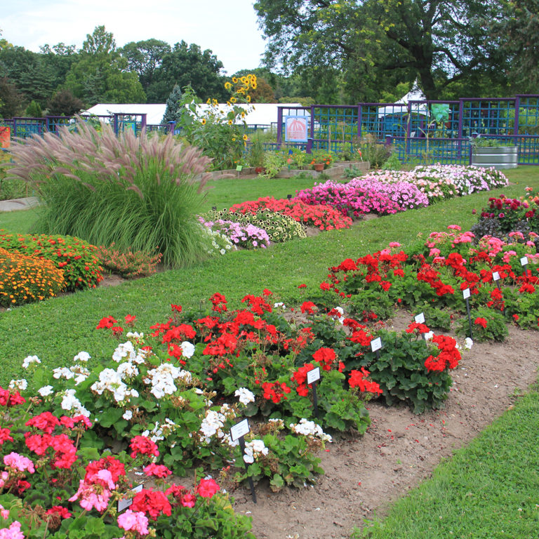 Hendrie Park Trials Garden