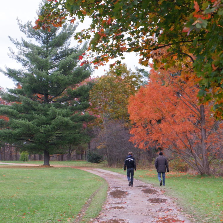 Hikers Walking Down Pinetum Trail In Fall