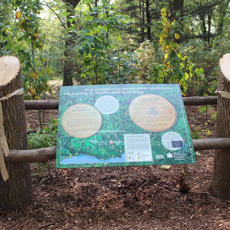 Indigenous Plants Trail Educational Signage