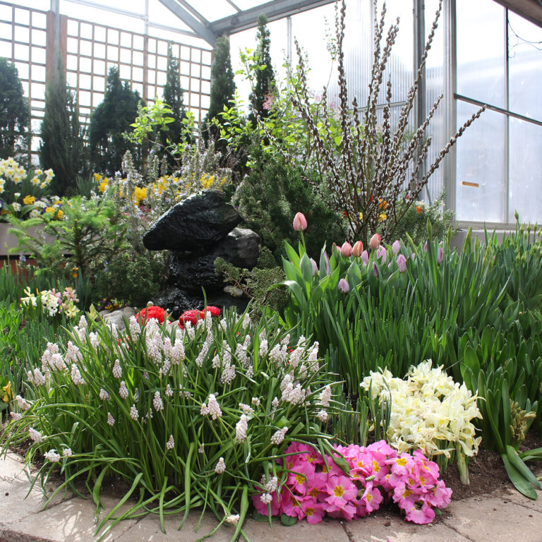 Indoor Breezeway Floral Display Spring 2019