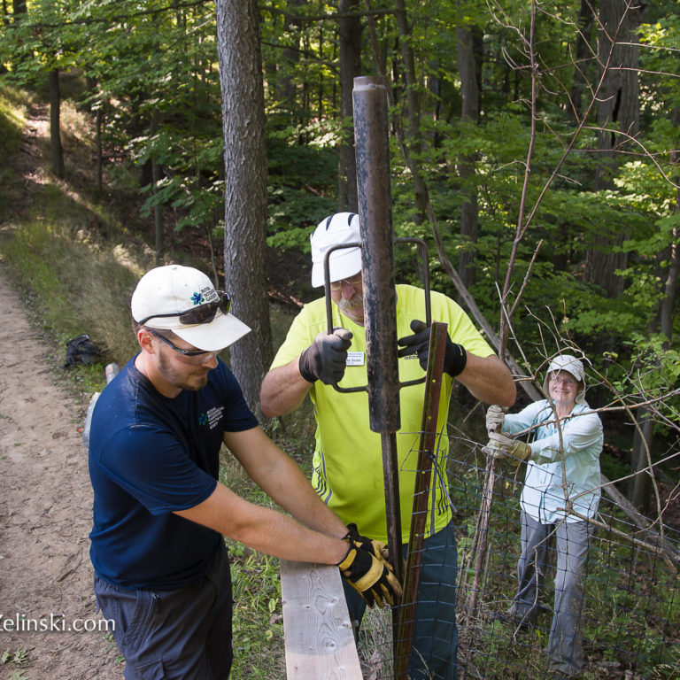 Volunteers and staff Installing Fence Posts on an RBG trail