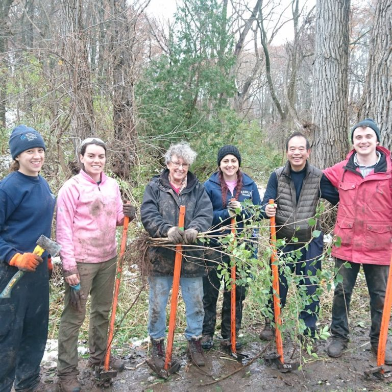 Volunteers Posing With Tools In Nature Sanctuary