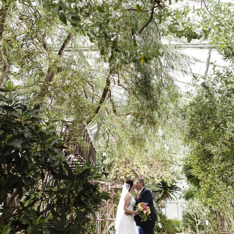 Wedding Couple In Mediterranean Garden Greenhouse