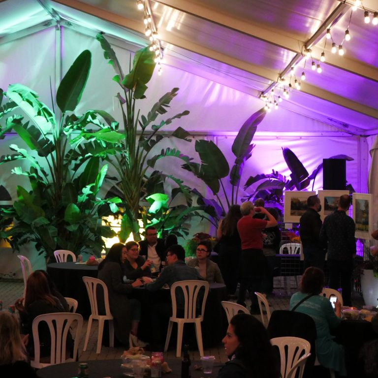 Guests in the rose garden tent