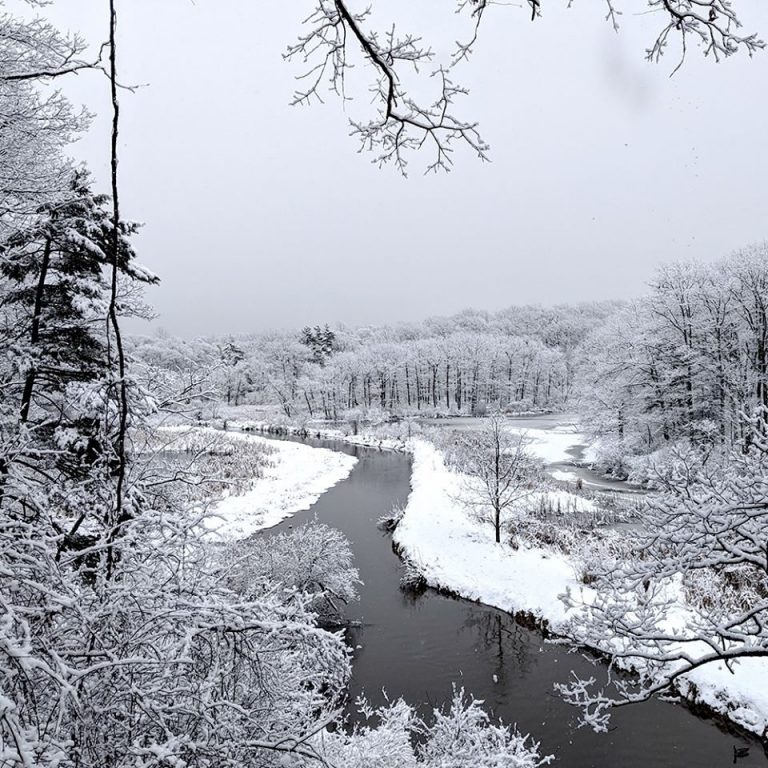 Snow-covered Hendrie Valley and Grindstone Creek