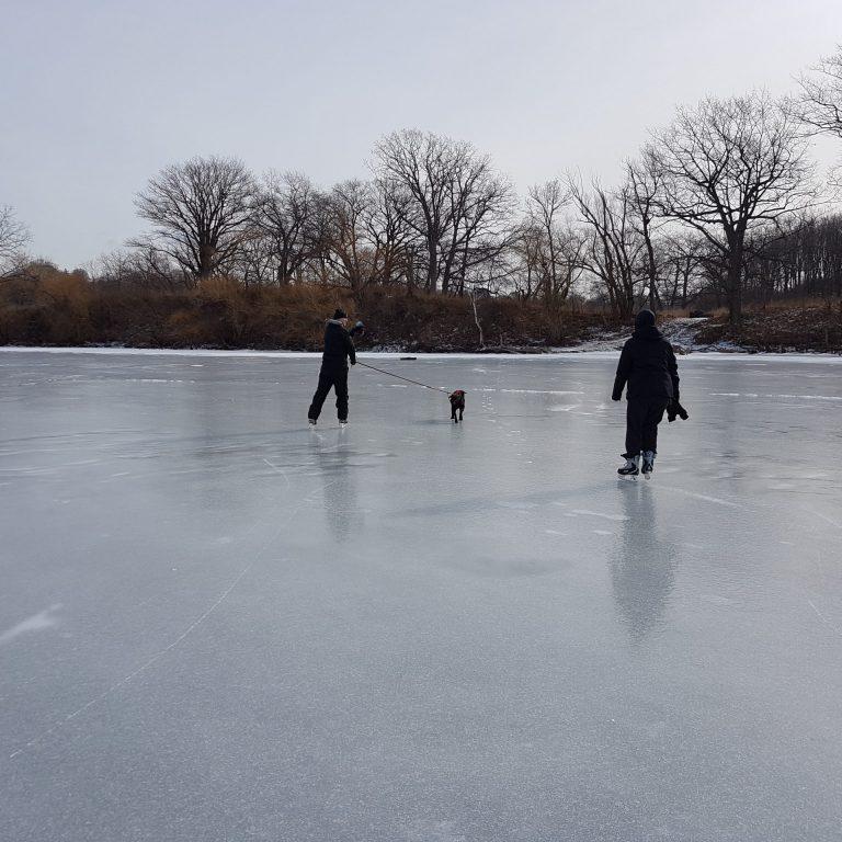 Skating at Princess Point