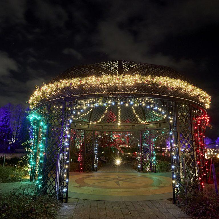 Rose Garden gazebo wrapped in lights during winter wonders