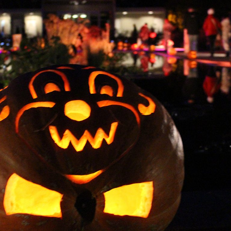 Clown carved on jack-o-lantern lit at night in Hendrie Park