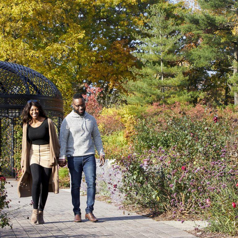 couple walking along rose garden path in fall