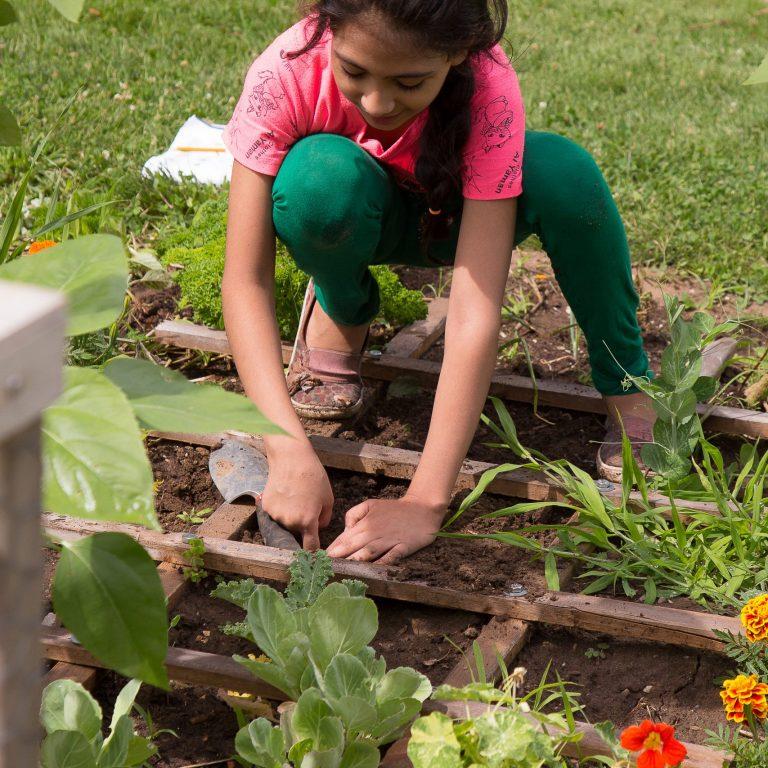 Girl planting in veggie garden