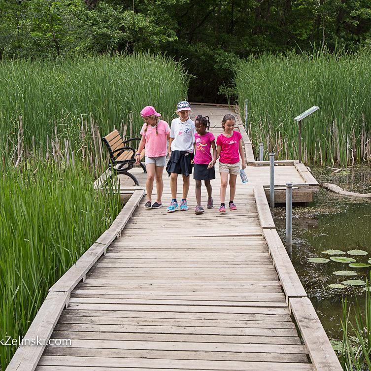 Girls Walking Down Boardwalk In Marsh Credit Markzelinski.com