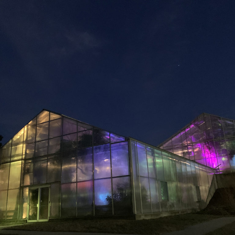 Greenhouse Lit From Inside At Night At Rbg After Dark