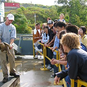 High School Group At Fishway Watching Turtle