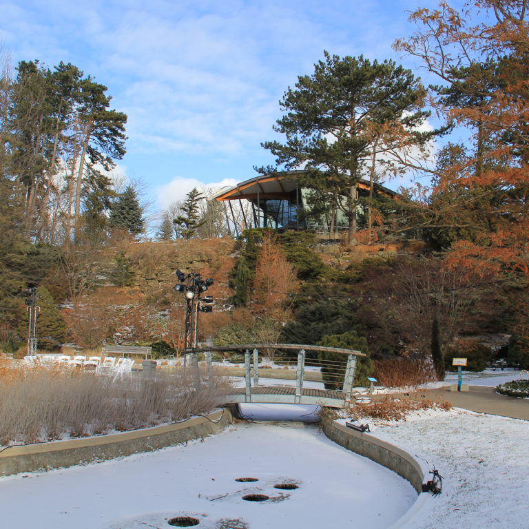 Rock Garden Lower Bowl In Winter