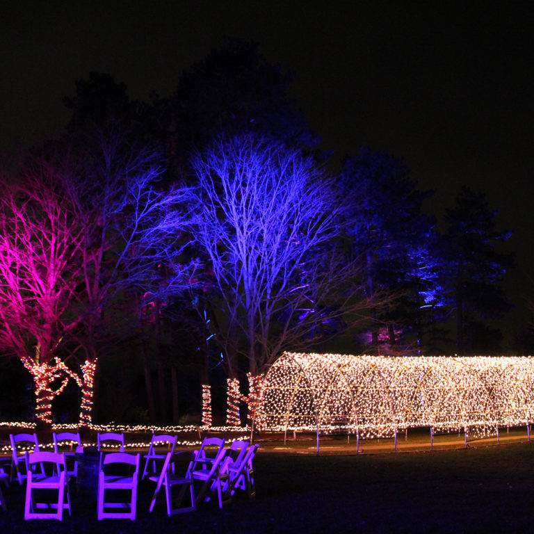 Winter Lights At The Rock Light Tunnel