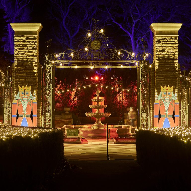 Scented Garden and Hendrie Park Gates lit for winter wonders